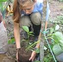 Sustainable agriculture volunteer and internship in Ecuador