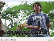 sustainable cacao production in Ecuador with the help of volunteer groups
