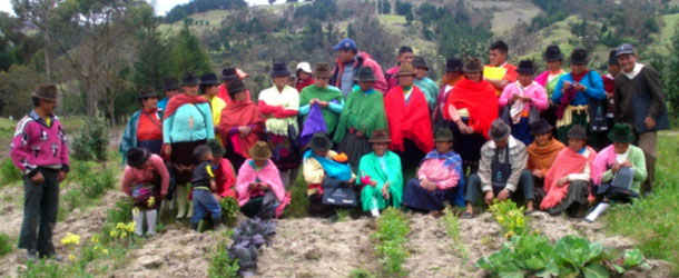 A volunteer option in the Andes in an indigenous community
