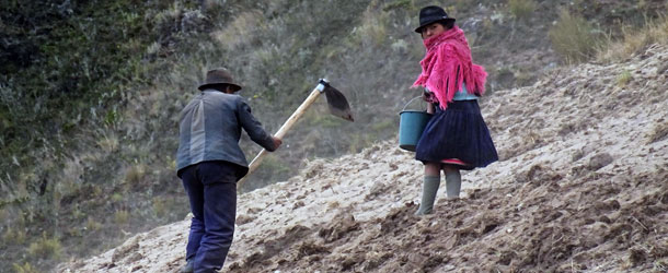 Volunteers work in Ecuador in indigenous communities in sustainable development projects
