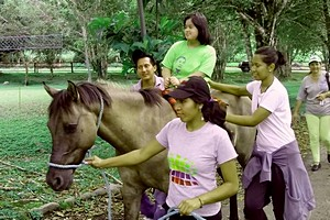 Yanapuma volunteers in Ecuador working with children with special needs on an equine therapy project